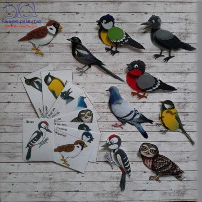 Дидактическая игра «Зимующие птицы»