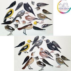 Дидактическая игра «Перелетные птицы»