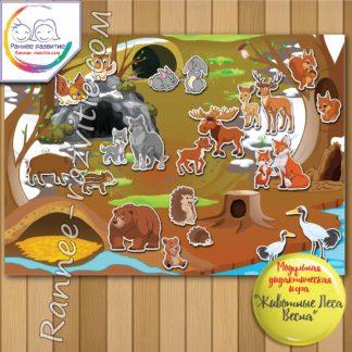Модульная дидактическая игра «Животные леса. Весна»