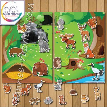 Модульная дидактическая игра «Животные леса. Лето»