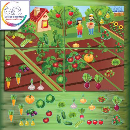 Модульная дидактическая игра «Сад-огород»