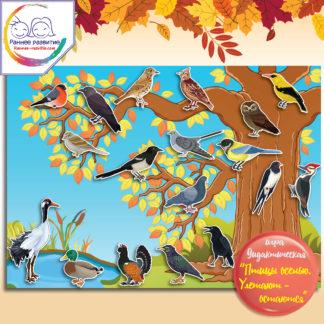 Дидактическая игра «Птицы осенью. Улетают-остаются»