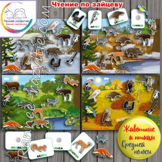 Дидактическая игра «Животные и птицы средней полосы». Складовые карточки по методике Н. Зайцева, чтение по кубикам.
