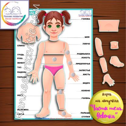Дидактическая игра «Части тела. Девочка»