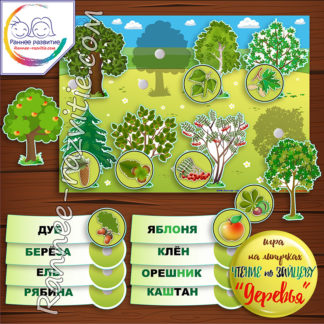 Игра на липучках «Деревья и плоды». Чтение по складам, методика Зайцева